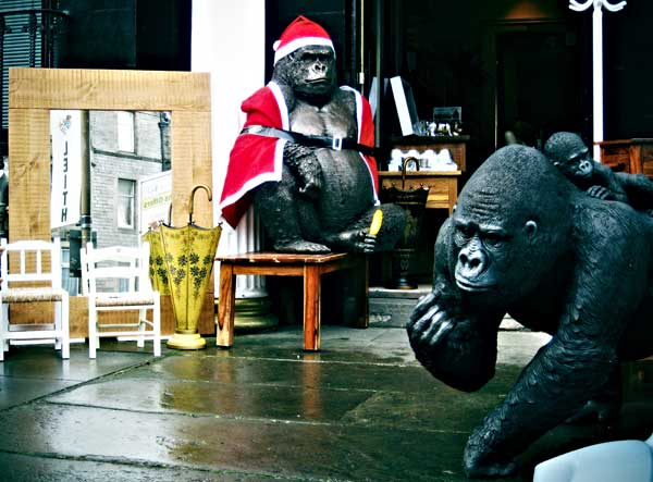 Christmas gorillas by martushka